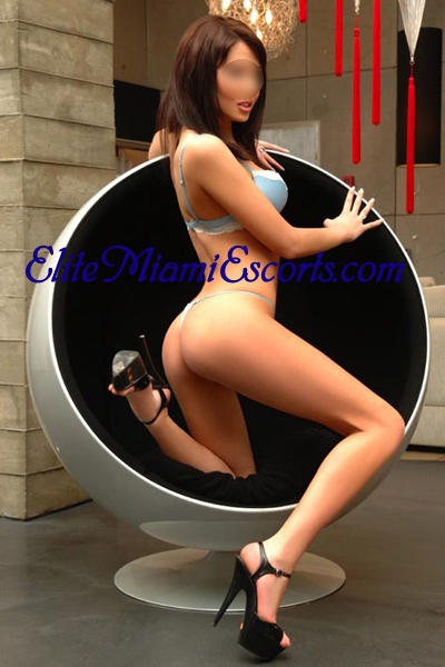 Miami escorts argentina Miami Escorts, Elite VIP Models